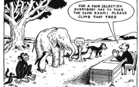 Standardized testing promotes stress with no indication of learning
