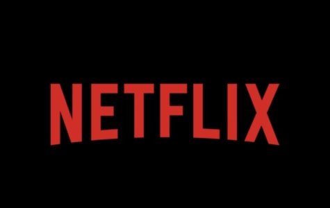 The Effect of Streaming Services on Shows and Movies