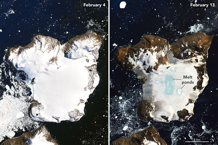 Antarctica's Eagle Island on Feb. 4 and Feb. 13, 2020. (Image: © NASA Earth Observatory)