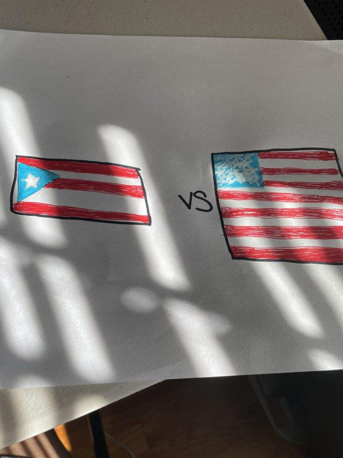 Should The United States Make Puerto Rico a State or Not?